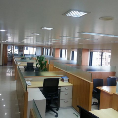 SAUDIAN Company
